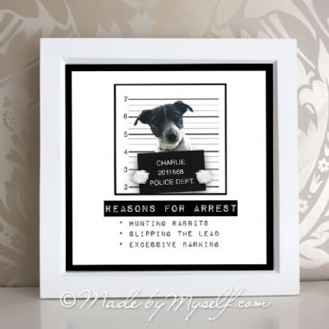 Naughty Pet Mug Shot (Framed)